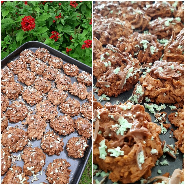 Chocolate Peppermint Biscuits