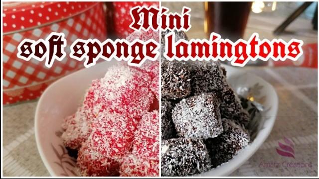 Soft Sponge Lamingtons - Minis🍰❤🖤