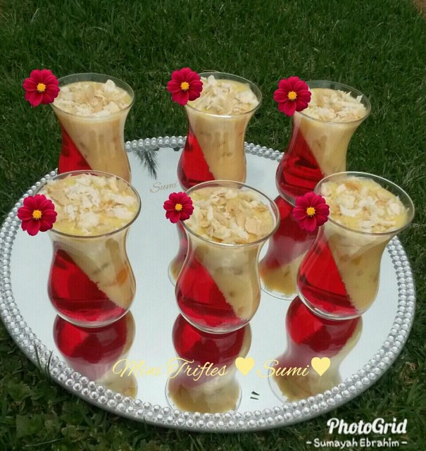 Mini Trifles Quick & Easy By Sumi